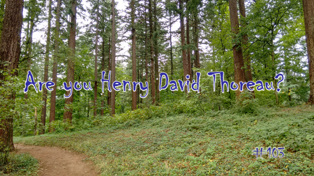 Are You Henry David Thoreau?