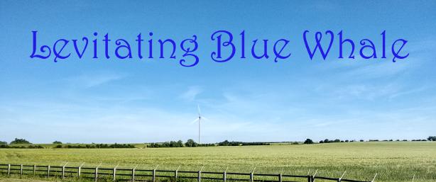 Levitating Blue Whale